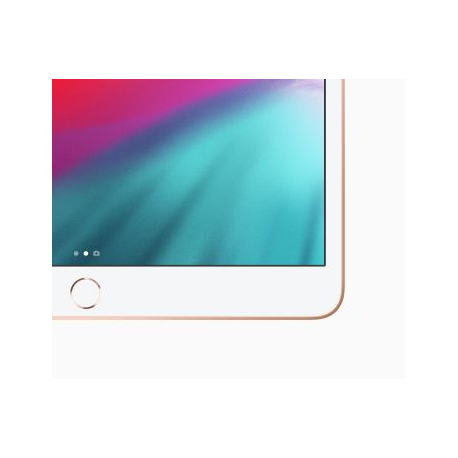 10.5-INCH IPAD AIR WI-FI 256