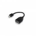 Lenovo MINI DP(M)/FULL SIZE(F) (Mini-DisplayPort/DisplayPort)
