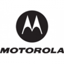 Motorola - Handheld screen protector (pack of 3 ) - for Motorola WT4000, WT4090